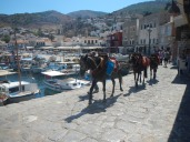 Donkey ride in Hydra