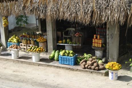 Republica Dominicana -Eco Caribe Tour-un mic aprozar cu fructe exotice