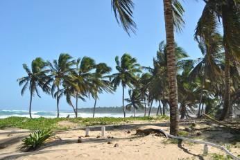 Republica Dominicana -Eco Caribe Tour-Plaja zona Bavaro