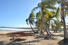 Republica Dominicana -Eco Caribe Tour-Plaja nisip fin zona Bavaro