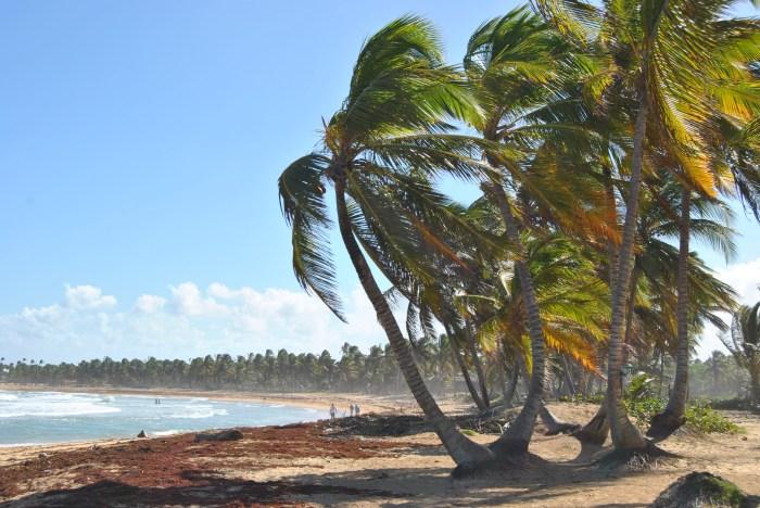 Republica Dominicana -Eco Caribe Tour-Plaja Caraibe